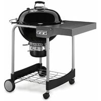 Barbecue Weber Performer GBS