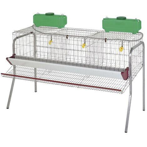 Batería para 15 gallinas ponedoras en 3 departamentos 155x70x95 cm