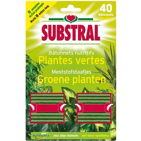 Bâtonnet nutritif plantes vertes Substral - Vendu par 40