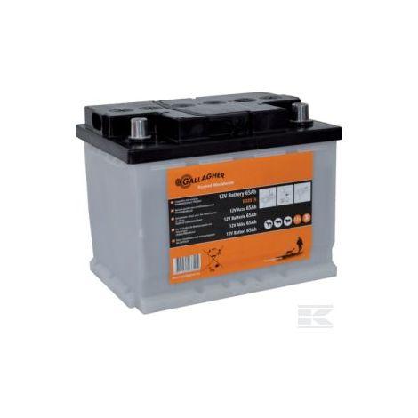 Batterie 12V 65Ah - Gallagher