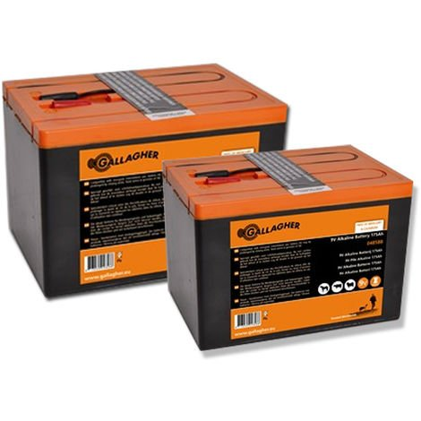 Batterie alcaline da 9V professionali Gallagher NON ricaricabili Gallagher