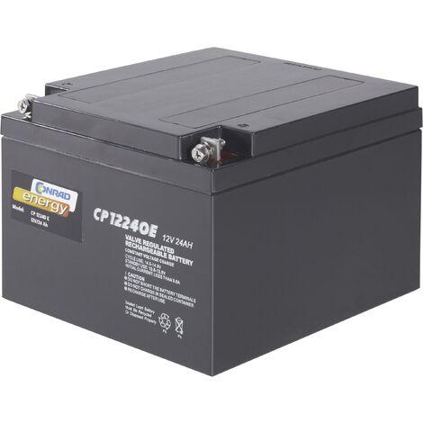 Batterie au plomb 12 V 24 Ah Conrad energy CE12V/24Ah plomb (AGM) (l x H x P) 175 x 125 x 167 mm raccord à vis M5 sans entretien A37558