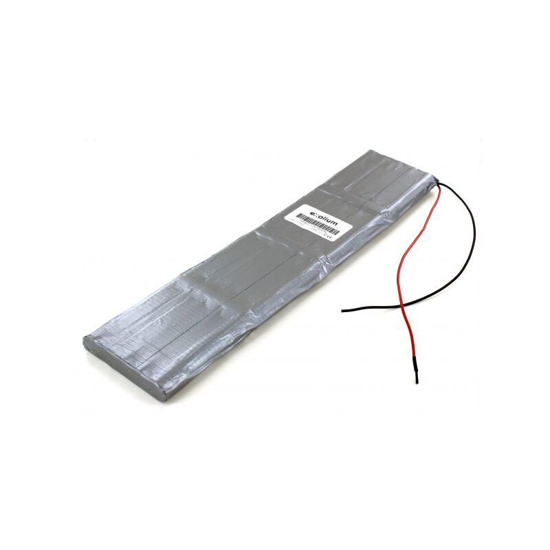 Batterie Sécateur Electrocoup F3000 F3010 Petit modèle 48V ...