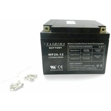 Batterie tondeuse autoportée Snapper 12V - 26Ah