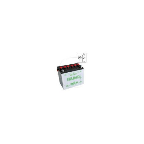 Batterie tondeuse Type 12N24-4 12V 24 AH