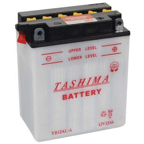 Batterie tracteur tondeuse Tashima 12V 12A