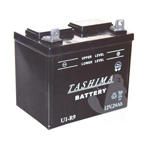 Batterie U1R9 - 12V, 24A (+ à droite)