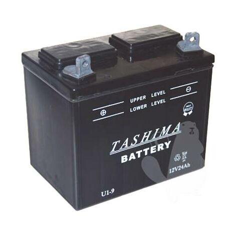 Batterie U1R9 - 12V, 24A (+ à gauche)