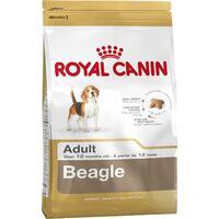 Beagle Adult - 12kg