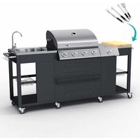 BEEFMASTER Gas grill made of stainless steel with 4+1 burners grill and sink