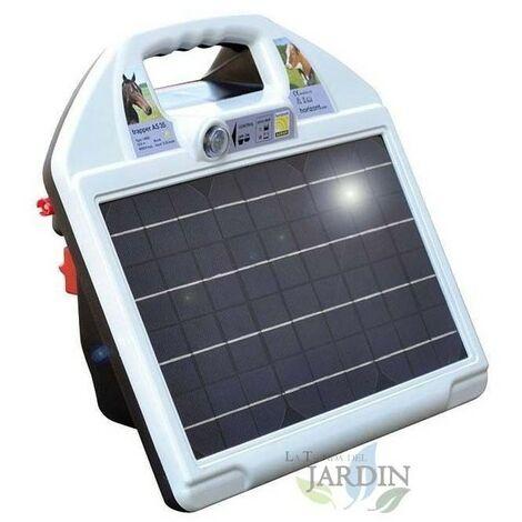 Berger électrique 12V - 230V avec accumulateur solaire