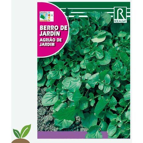 BERRO DE JARDÍN - SOBRE DE SEMILLAS 3G
