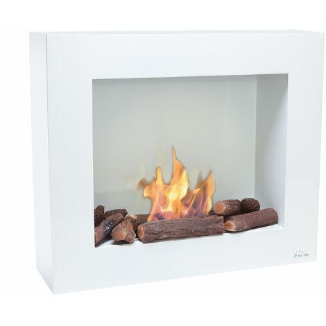BestBio black, profitez dâ 'un feu de flamme réel, dans une cheminée ultra moderne !