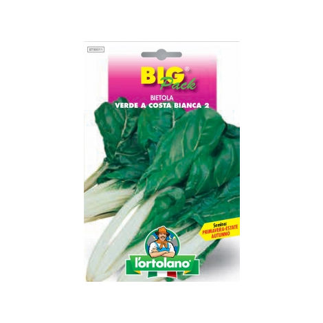 Bietola da Costa Verde a Costa Bianca 2 ( Da Taglio ) - Big Pack - L' Ortolano