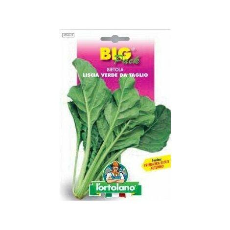Bietola Liscia Verde da Taglio - Big Pack - L'Ortolano