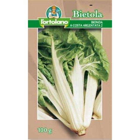 Bietola Verde a Costa Bianca 2 - 100 gr seme - L'Ortolano