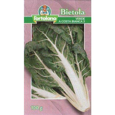 Bietola Verde A Costa Bianca 3 Gr.100 - Sementi Seme