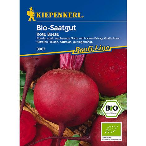 BIO Rote Beete Bio-Saatgut