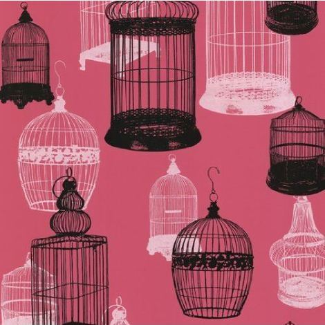Birdcage Wallpaper Pink White Black Luxury Modern Feature Paste The Wall