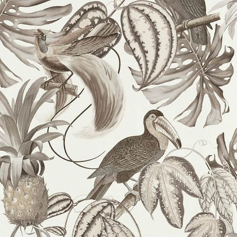 Birds Of Paradise Wallpaper Brown Cream Erismann Paste The Wall