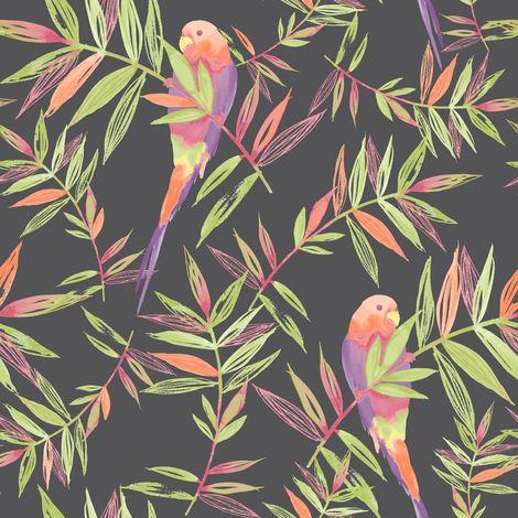 Birds Wallpaper Tropical Parrot Floral Leaves Jungle Black Multi Coloured Raschr