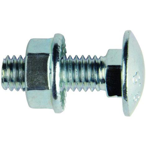 bizline 770142   boulon tête ronde collet carré m6 x 20 mm (x 100)