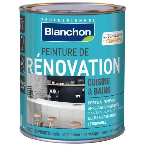 Blanchon Peinture de Rénovation 1L - Plusieurs modèles disponibles