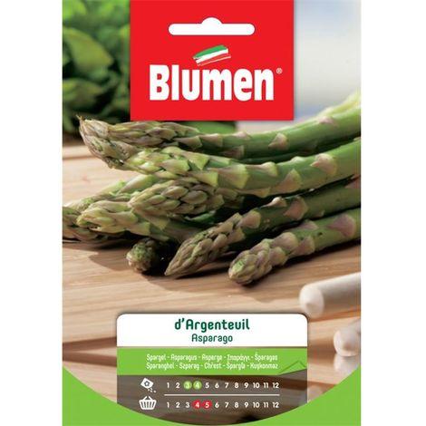 Blumen asparago d'argenteuil
