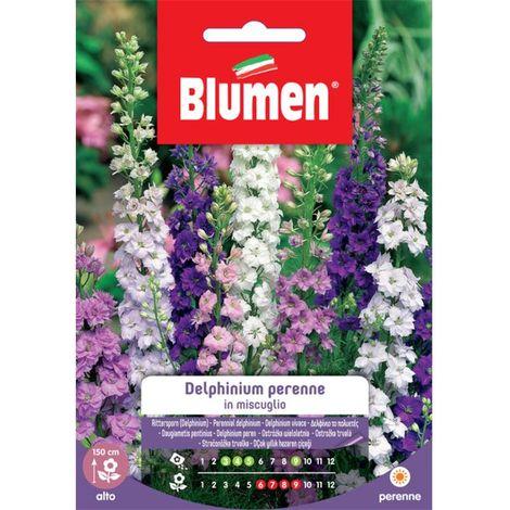 Blumen delphinium perenne in miscuglio