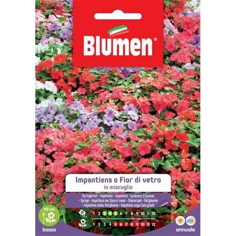 """main image of """"Blumen impatiens o fior di vetro in miscuglio"""""""