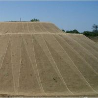 Böschungsmatte / Erosionsschutzmatte Noor Jutegewebe 1,22x50m 250g/m²