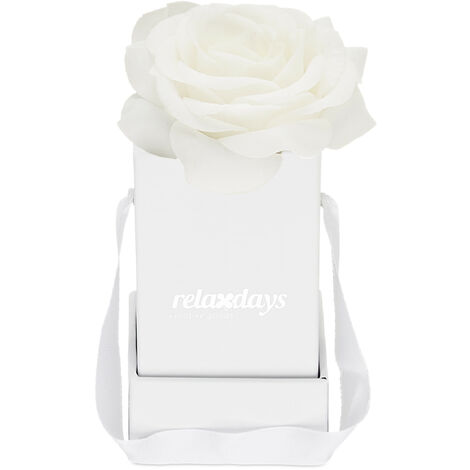 """main image of """"Boîte à roses, 1 plante, Bac floral blanc, durables, idée cadeaux, caisse à fleurs décorative, blanc"""""""