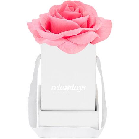 """main image of """"Boîte à roses, 1 plante, Bac floral blanc, durables, idée cadeaux, caisse à fleurs décorative, rosé"""""""