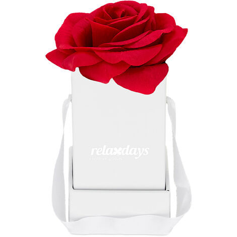 """main image of """"Boîte à roses, 1 plante, Bac floral blanc, durables, idée cadeaux, caisse à fleurs décorative, rouge"""""""