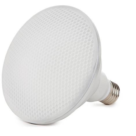 Bombilla de LEDs Par38 E27 Estanca IP65 12W 1080Lm 30.000H