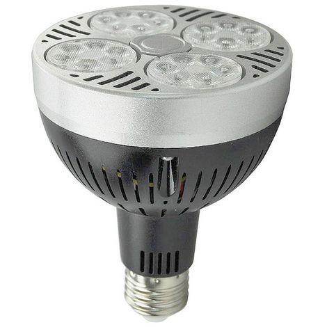 Bombilla LED E27 PAR30 35W 3200LM