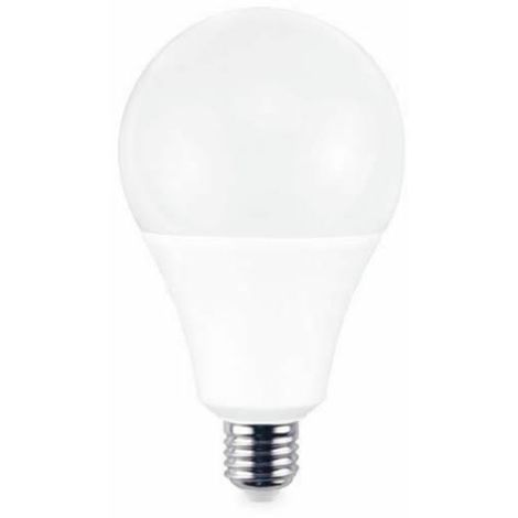 Bombilla LED globo 24W E27 2700K 2200lm 120x195mm