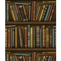 Bookcase Wallpaper Vintage Library Antique Heavyweight Luxury Fine Decor