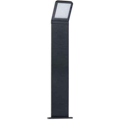 Borne de jardin LED 9 watt - 4000°K - Prise 220V - Non, Taille - 500mm