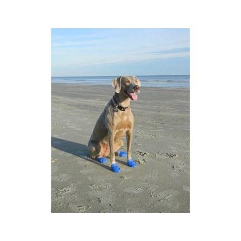 Botas protectoras para perros. Color Azul. M - M
