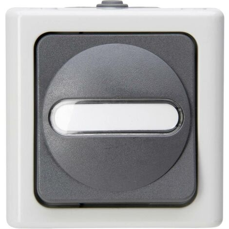 Bouton-poussoir Kopp 560856002 BlueElectric gris