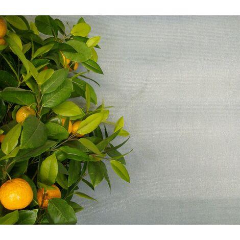 Brise-Vue de Couleur - 1 x 5m