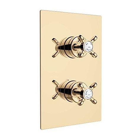 Bristan N2Shcdiv G 1901de douche double contrôle thermostatique à encastrer avec Integral deux prise de courant Inverseur, Doré