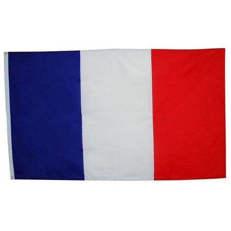 Bristol Novelty French Flag (One Size) (Red/White/Blue)