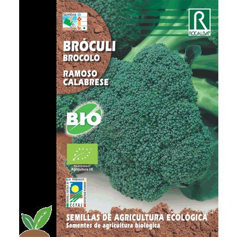 BROCOLI BROCOLI RAMOSO CALABRESE ECO - SEMILLAS