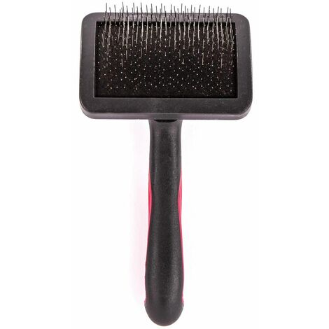 BROSSE CARDE CHAT PM