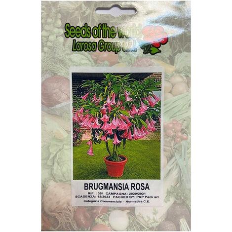 """main image of """"Brugmansia rosa (Datura) (Semente)"""""""
