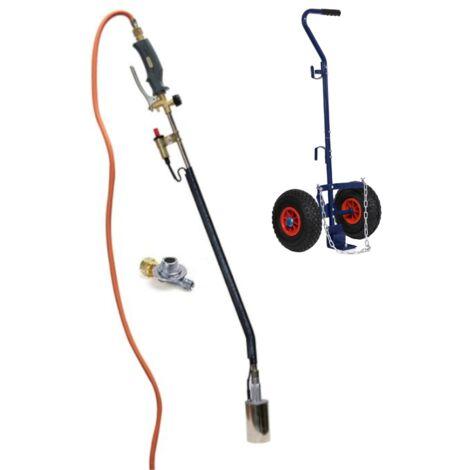 Brûleur de mauvaises herbes à gaz avec Piezo 5 mètres de tuyau de gaz, régulateur de pression et chariot bouteilles de gaz - GT89
