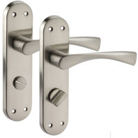 Brushed Chrome Door Handles on Backplate for Bathroom