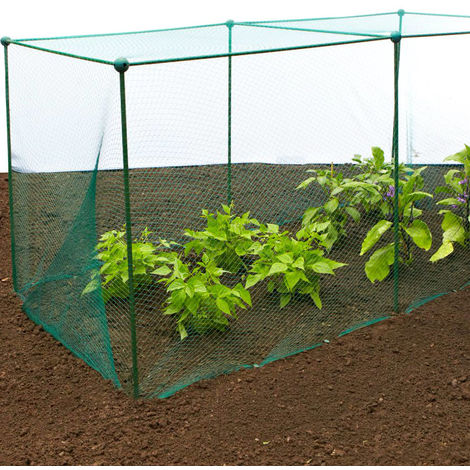 Structure 1,25 m x 1,25 m x 0,75 m /Protective Net for Strawberries GardenSkill Pop-Up/